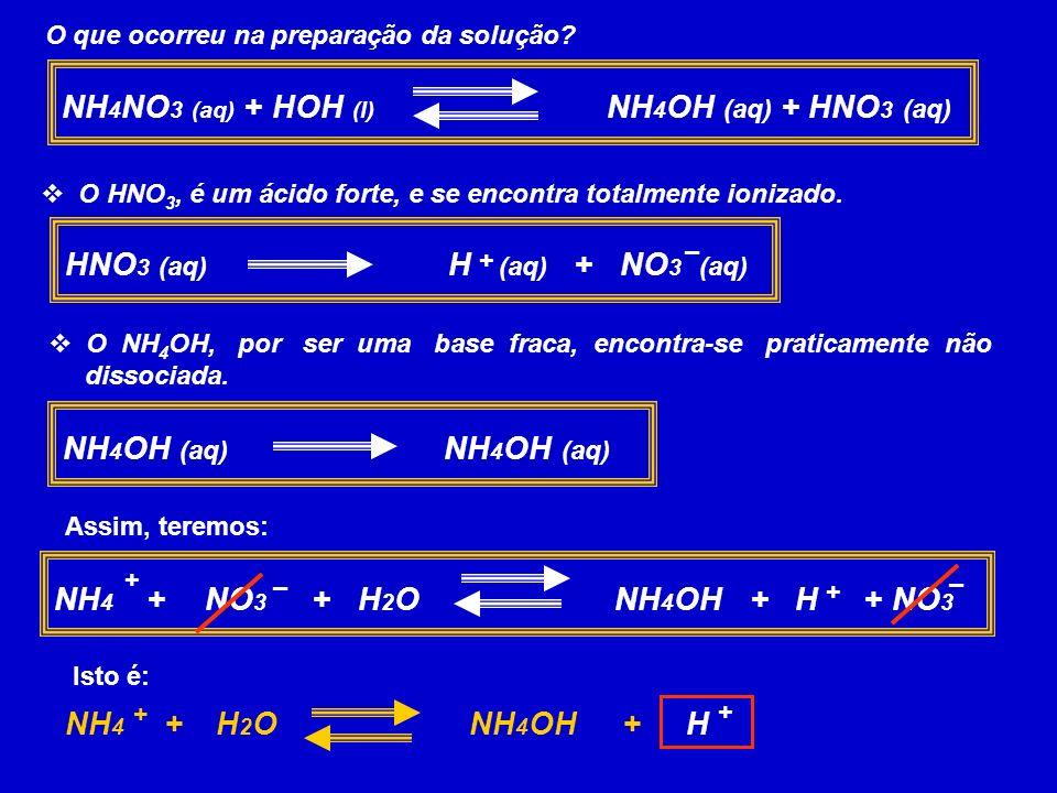 O que ocorreu na preparação da solução? NH 4 NO 3 (aq) + HOH (l) NH 4 OH (aq) + HNO 3 (aq) O HNO 3, é um ácido forte, e se encontra totalmente ionizad