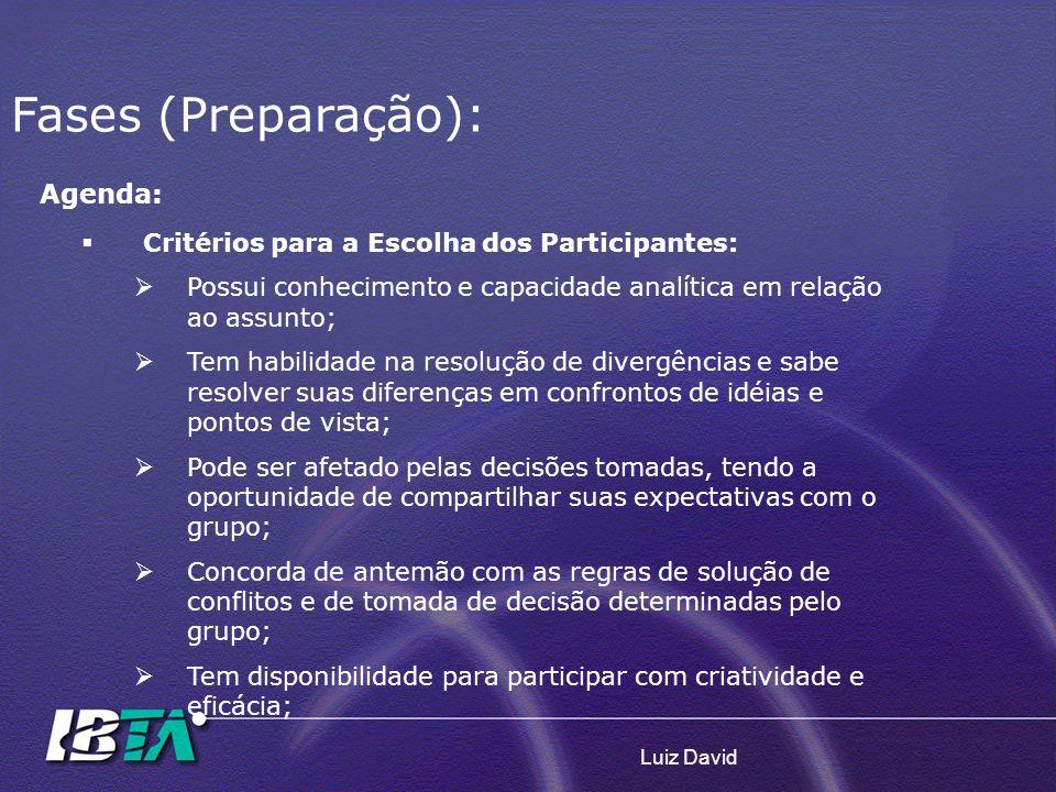 Luiz David Agenda: Critérios para a Escolha dos Participantes: Possui conhecimento e capacidade analítica em relação ao assunto; Tem habilidade na res