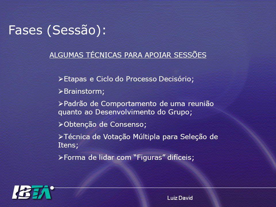 Luiz David Fases (Sessão): Etapas e Ciclo do Processo Decisório; Brainstorm; Padrão de Comportamento de uma reunião quanto ao Desenvolvimento do Grupo