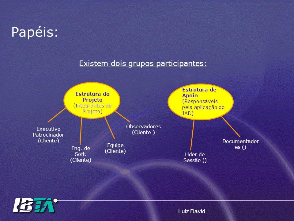 Luiz David Existem dois grupos participantes: Estrutura do Projeto (Integrantes do Projeto) Estrutura de Apoio (Responsáveis pela aplicação do JAD) Ex