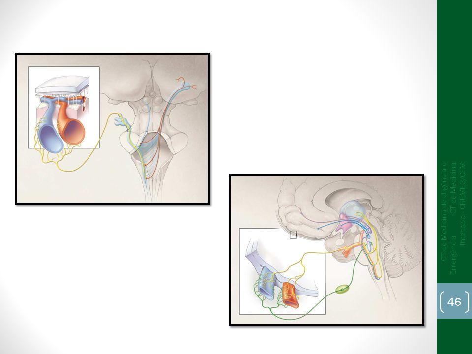 CT de Medicina de Urgência e Emergência CT de Medicina Intensiva - CREMEC/CFM 46