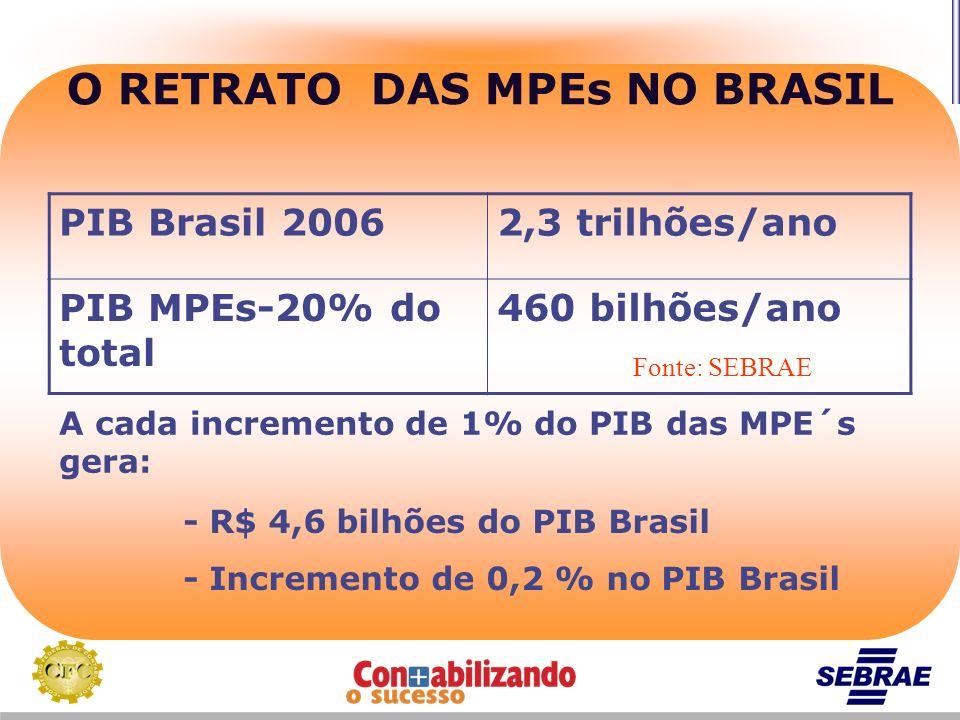 O RETRATO DAS MPEs NO BRASIL PIB Brasil 20062,3 trilhões/ano PIB MPEs-20% do total 460 bilhões/ano Fonte: SEBRAE A cada incremento de 1% do PIB das MP