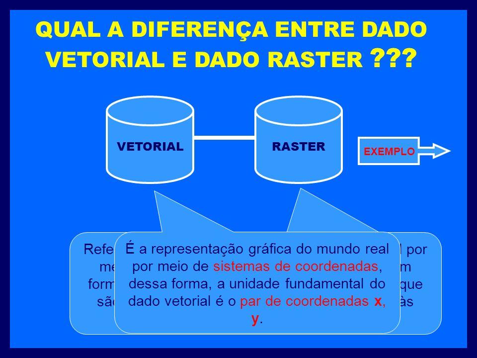 QUAL A DIFERENÇA ENTRE DADO VETORIAL E DADO RASTER .