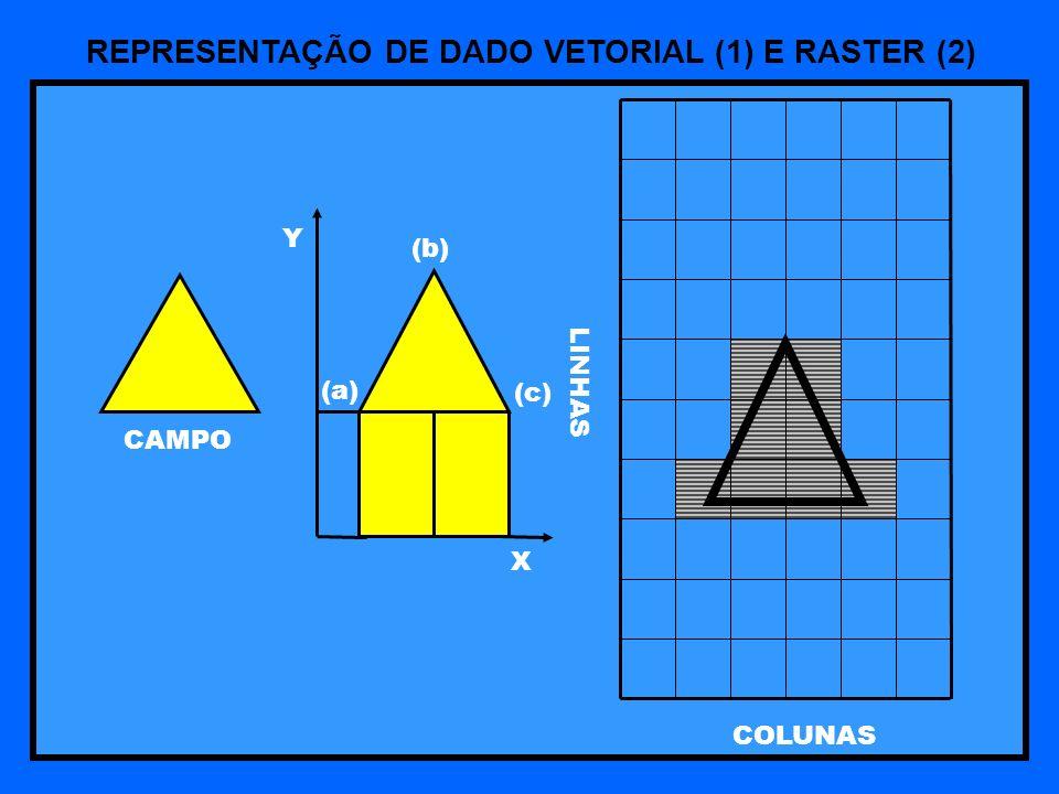 LINHAS COLUNAS CAMPO (b) (a) (c) Y X REPRESENTAÇÃO DE DADO VETORIAL (1) E RASTER (2)