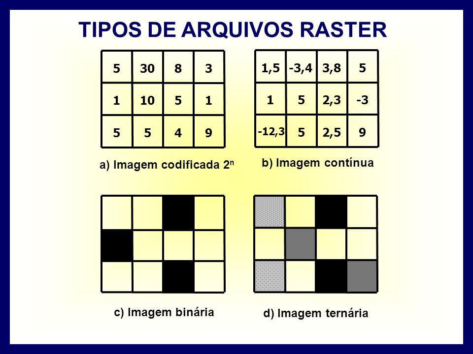 9455 15101 3830 5 a) Imagem codificada 2 n 92,55 -12,3 -32,351 53,8-3,4 1,5 b) Imagem contínua c) Imagem binária d) Imagem ternária TIPOS DE ARQUIVOS RASTER