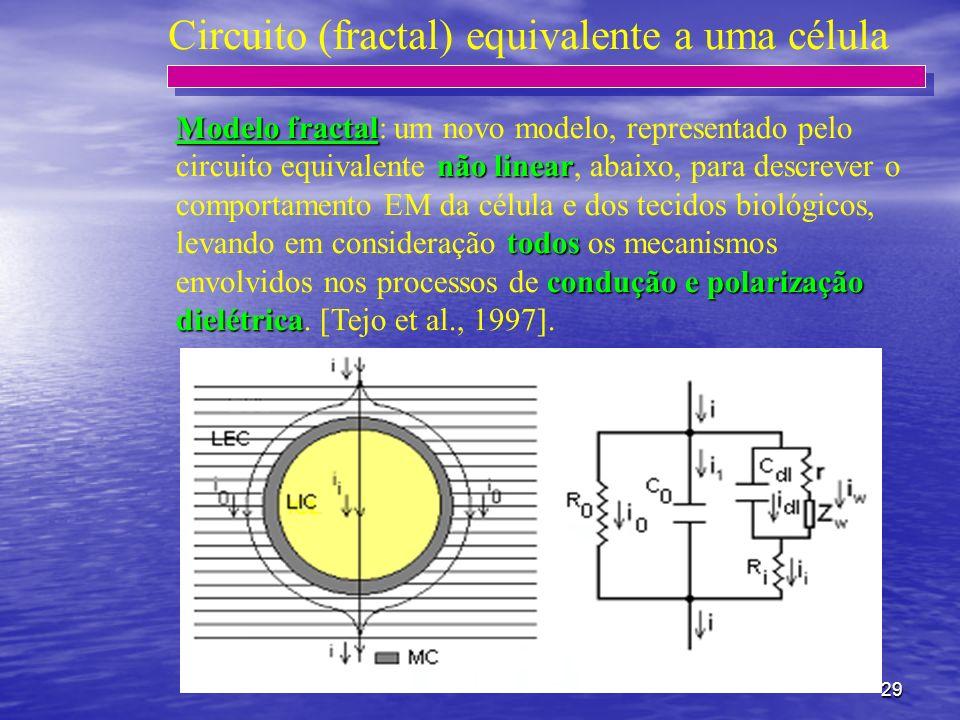 29 Circuito (fractal) equivalente a uma célula Modelo fractal não linear todos condução e polarização dielétrica Modelo fractal: um novo modelo, repre