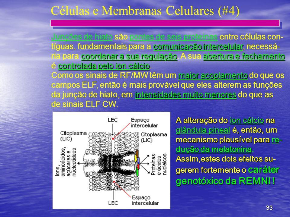 33 Células e Membranas Celulares (#4) Junções de hiato são pontes de seis proteínas entre células con- comunicação intercelular tíguas, fundamentais p