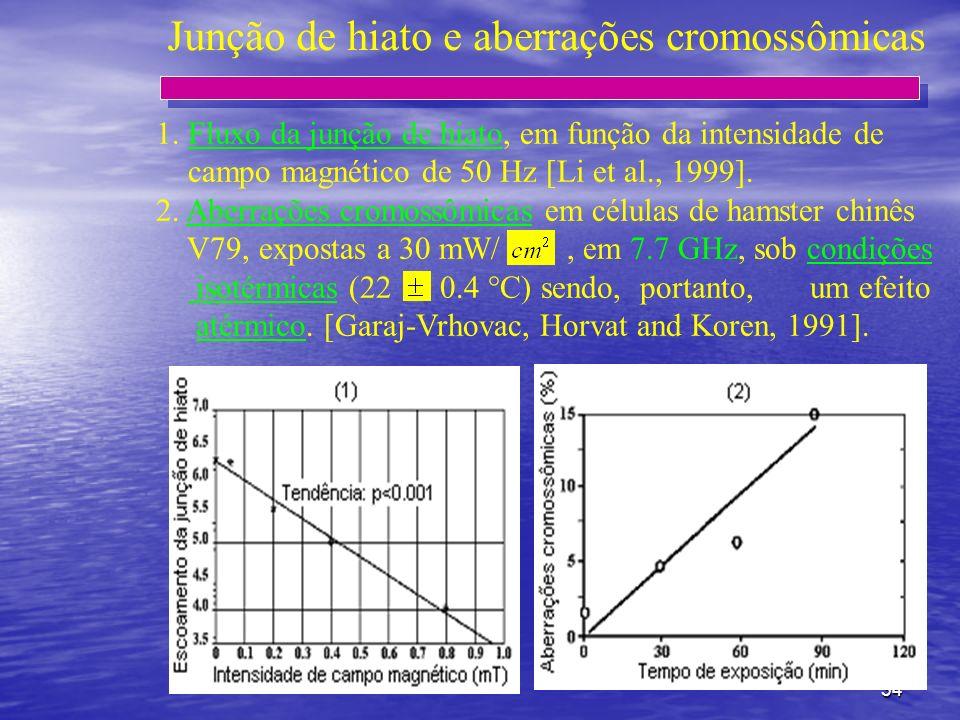 34 Junção de hiato e aberrações cromossômicas 1. Fluxo da junção de hiato, em função da intensidade de campo magnético de 50 Hz [Li et al., 1999]. 2.