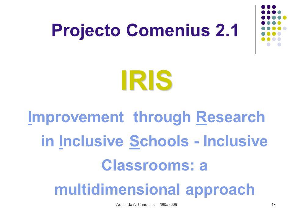 Adelinda A. Candeias - 2005/200619 Projecto Comenius 2.1IRIS Improvement through Research in Inclusive Schools - Inclusive Classrooms: a multidimensio