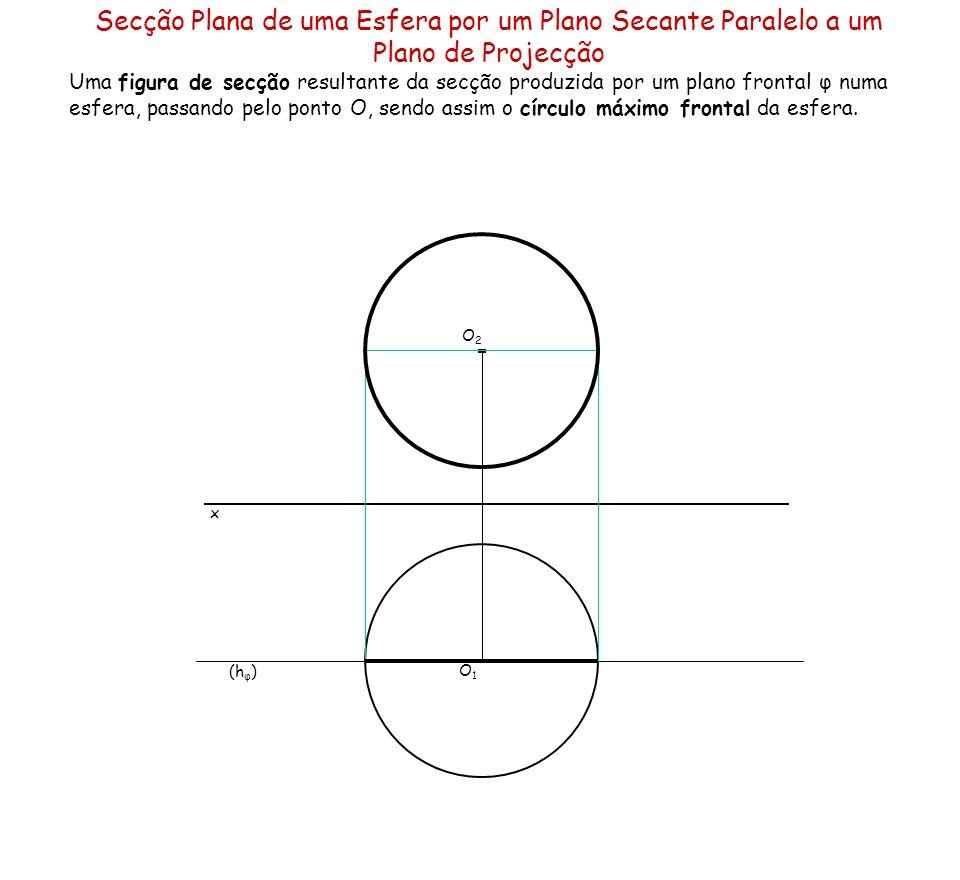 Secção Plana de uma Esfera por um Plano Secante Paralelo a um Plano de Projecção Uma figura de secção resultante da secção produzida por um plano fron