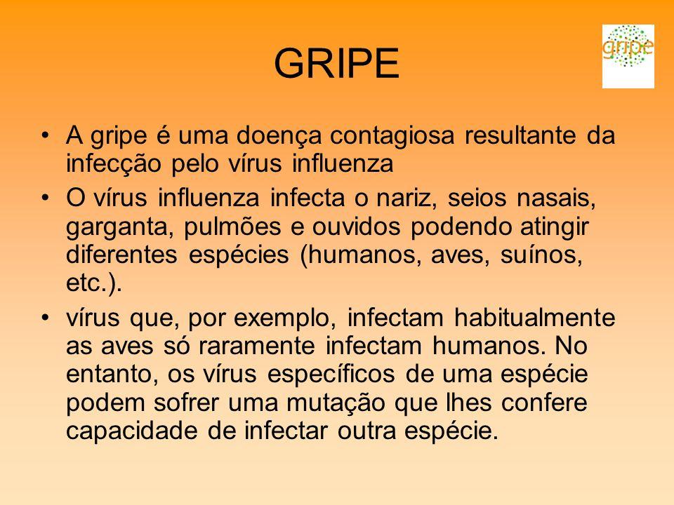 GRIPE A gripe é uma doença contagiosa resultante da infecção pelo vírus influenza O vírus influenza infecta o nariz, seios nasais, garganta, pulmões e