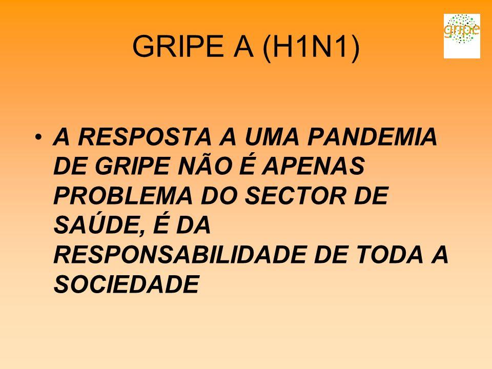 GRIPE A (H1N1) A RESPOSTA A UMA PANDEMIA DE GRIPE NÃO É APENAS PROBLEMA DO SECTOR DE SAÚDE, É DA RESPONSABILIDADE DE TODA A SOCIEDADE