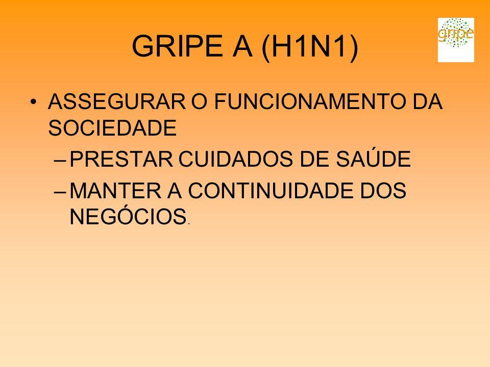GRIPE A (H1N1) ASSEGURAR O FUNCIONAMENTO DA SOCIEDADE –PRESTAR CUIDADOS DE SAÚDE –MANTER A CONTINUIDADE DOS NEGÓCIOS.