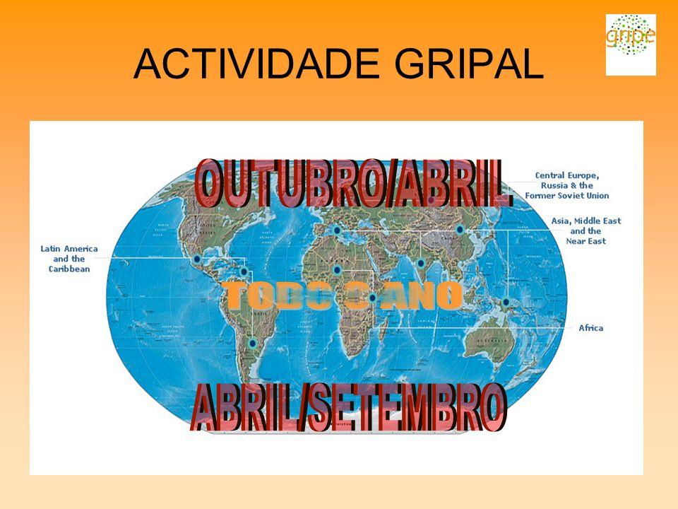 ACTIVIDADE GRIPAL