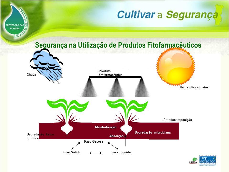 Raios ultra violetas Chuva Produto fitofarmacêutico Fotodecomposição Degradação fisico- química Degradação microbiana Fase Gasosa Fase LíquidaFase Sól