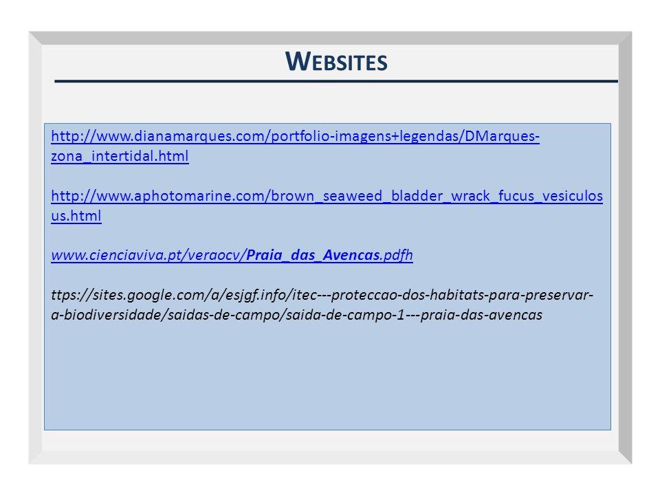 W EBSITES http://www.dianamarques.com/portfolio-imagens+legendas/DMarques- zona_intertidal.html http://www.aphotomarine.com/brown_seaweed_bladder_wrac