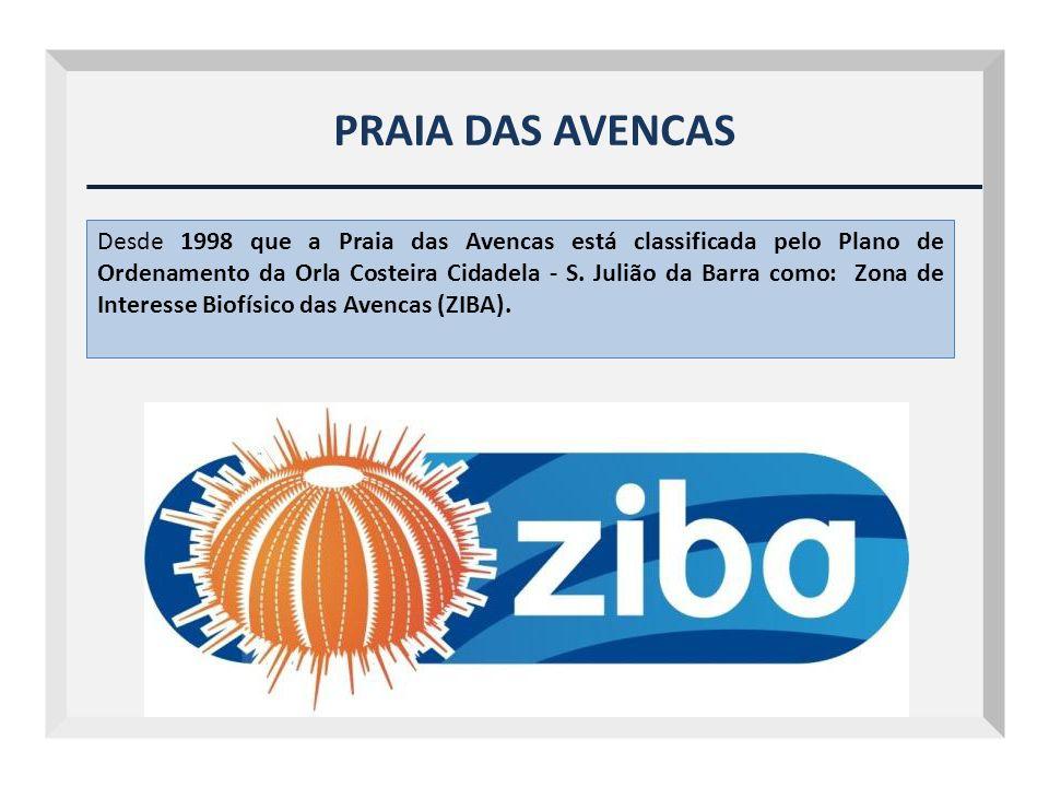 PRAIA DAS AVENCAS Desde 1998 que a Praia das Avencas está classificada pelo Plano de Ordenamento da Orla Costeira Cidadela - S. Julião da Barra como: