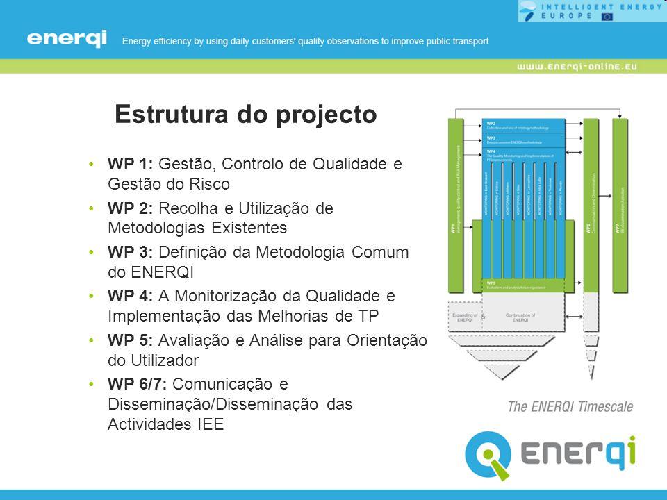 Estrutura do projecto WP 1: Gestão, Controlo de Qualidade e Gestão do Risco WP 2: Recolha e Utilização de Metodologias Existentes WP 3: Definição da M