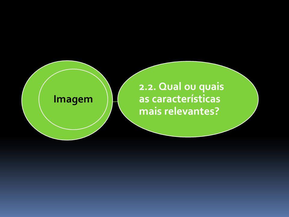 2.2. Qual ou quais as características mais relevantes? Imagem
