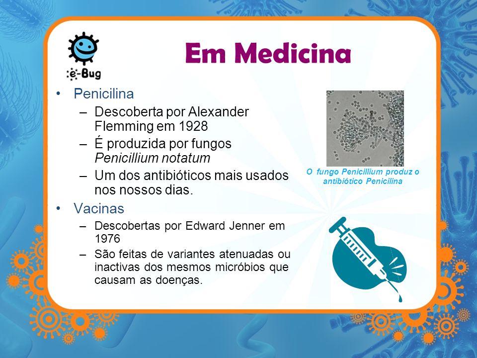 Em Medicina Penicilina –Descoberta por Alexander Flemming em 1928 –É produzida por fungos Penicillium notatum –Um dos antibióticos mais usados nos nos