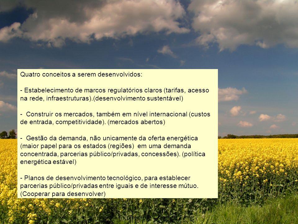Quatro conceitos a serem desenvolvidos: - Estabelecimento de marcos regulatórios claros (tarifas, acesso na rede, infraestruturas).(desenvolvimento su