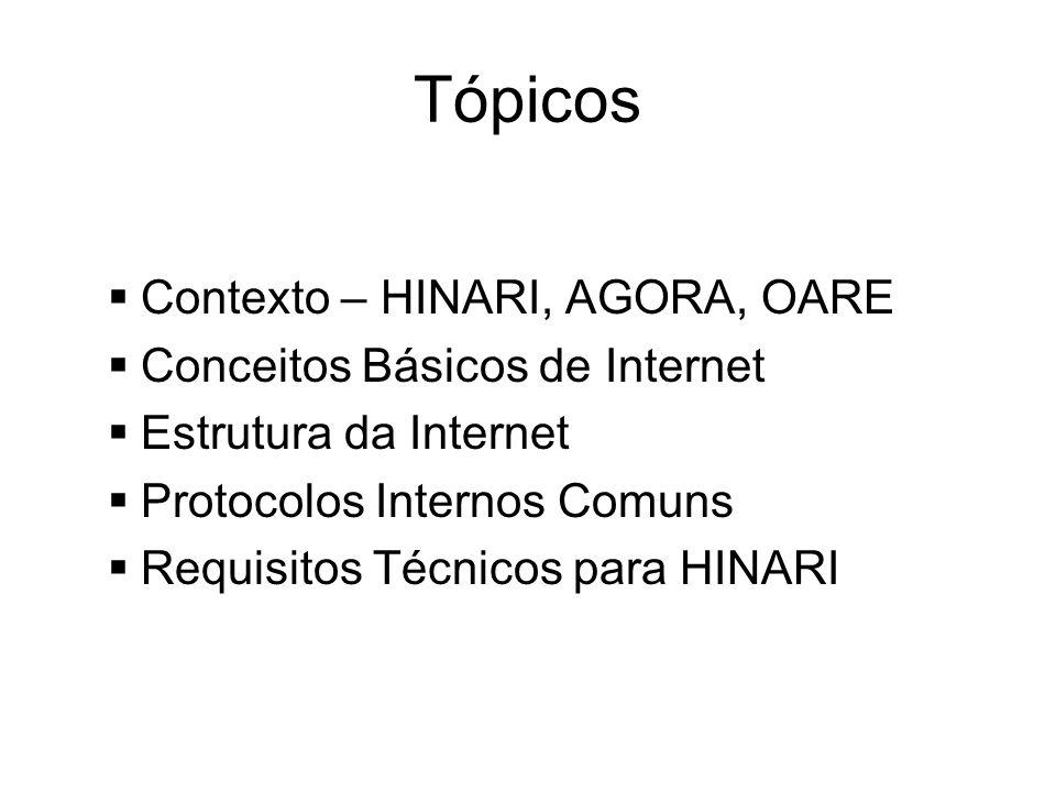 Tópicos Contexto – HINARI, AGORA, OARE Conceitos Básicos de Internet Estrutura da Internet Protocolos Internos Comuns Requisitos Técnicos para HINARI
