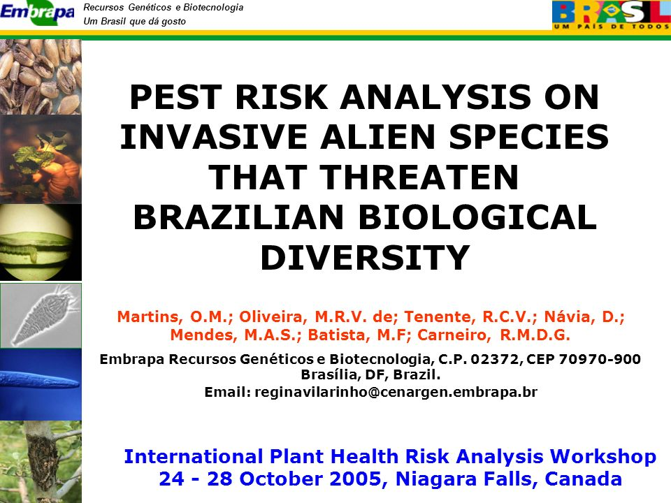Recursos Genéticos e Biotecnologia Um Brasil que dá gosto National Program of Biological Diversity (PRONABIO) Designation No 1.354, December, 29th, 1994.
