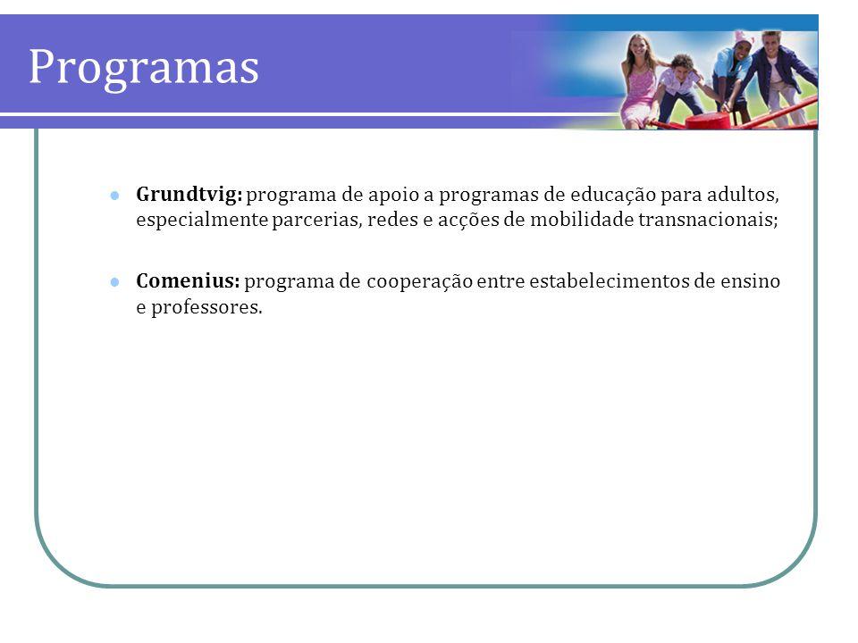 Programas Grundtvig: programa de apoio a programas de educação para adultos, especialmente parcerias, redes e acções de mobilidade transnacionais; Com