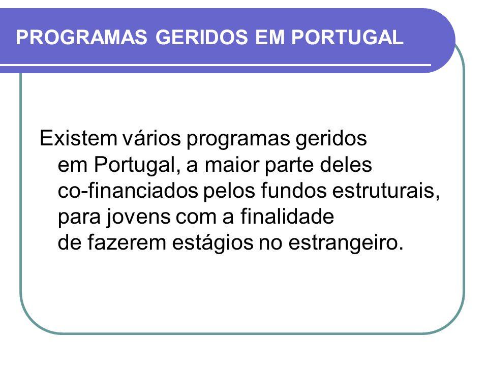 Existem vários programas geridos em Portugal, a maior parte deles co-financiados pelos fundos estruturais, para jovens com a finalidade de fazerem est