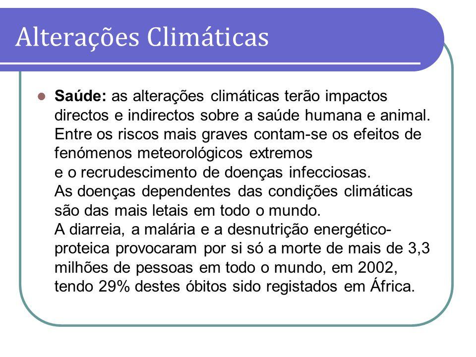 Saúde: as alterações climáticas terão impactos directos e indirectos sobre a saúde humana e animal. Entre os riscos mais graves contam-se os efeitos d