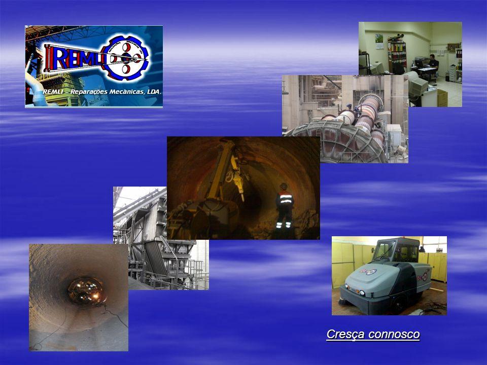 –Apresentação da REMLI- Histórico –Organigrama Funcional –Manutenção Industrial –Limpezas industriais –Recuperação Paisagística –Orçamentos –Clientes –Instalações e Equipamentos Índice Remissivo _________________________________________________ Índice Remissivo _________________________________________________