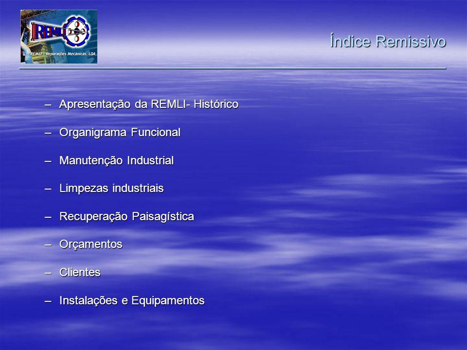 –Apresentação da REMLI- Histórico –Organigrama Funcional –Manutenção Industrial –Limpezas industriais –Recuperação Paisagística –Orçamentos –Clientes