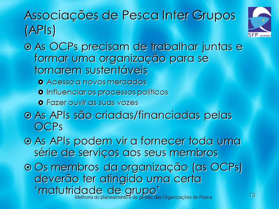 13 Associações de Pesca Inter Grupos (APIs) As OCPs precisam de trabalhar juntas e formar uma organização para se tornarem sustentáveis Acesso a novos