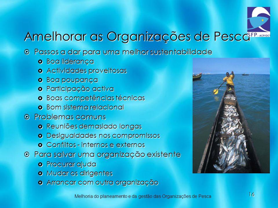 16 Amelhorar as Organizações de Pesca Passos a dar para uma melhor sustentabilidade Boa liderança Actividades proveitosas Boa poupança Participação ac