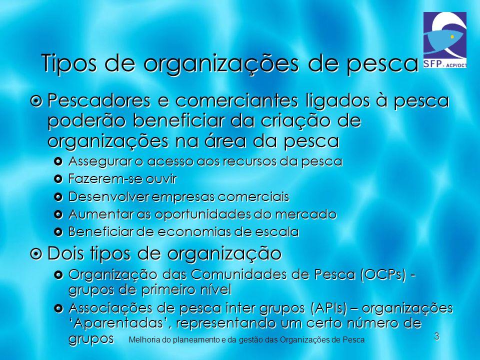 3 Tipos de organizações de pesca Pescadores e comerciantes ligados à pesca poderão beneficiar da criação de organizações na área da pesca Assegurar o