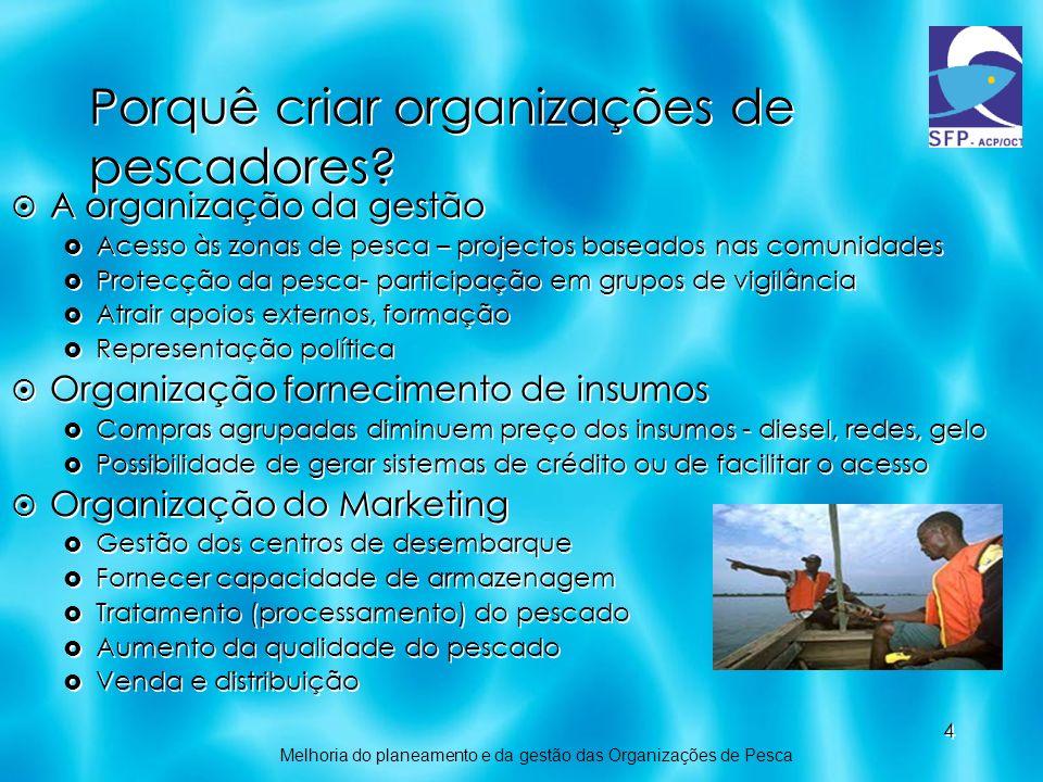 4 Porquê criar organizações de pescadores? A organização da gestão Acesso às zonas de pesca – projectos baseados nas comunidades Protecção da pesca- p