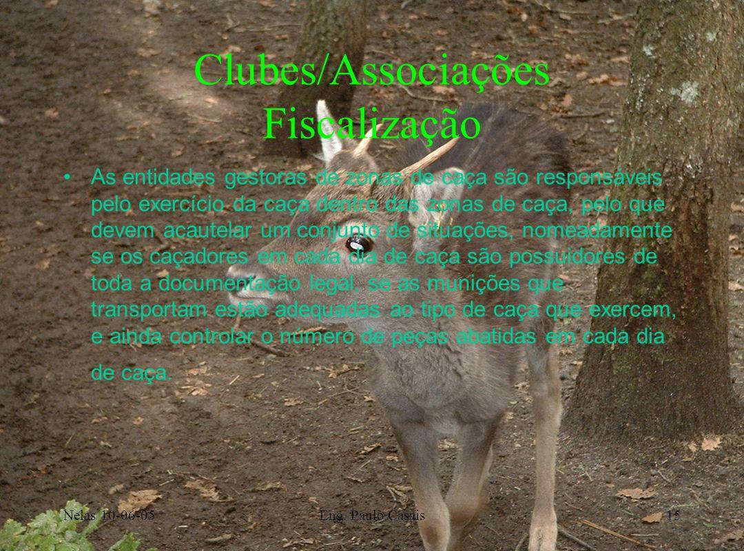Nelas 10-06-05Eng. Paulo Casais15 Clubes/Associações Fiscalização As entidades gestoras de zonas de caça são responsáveis pelo exercício da caça dentr