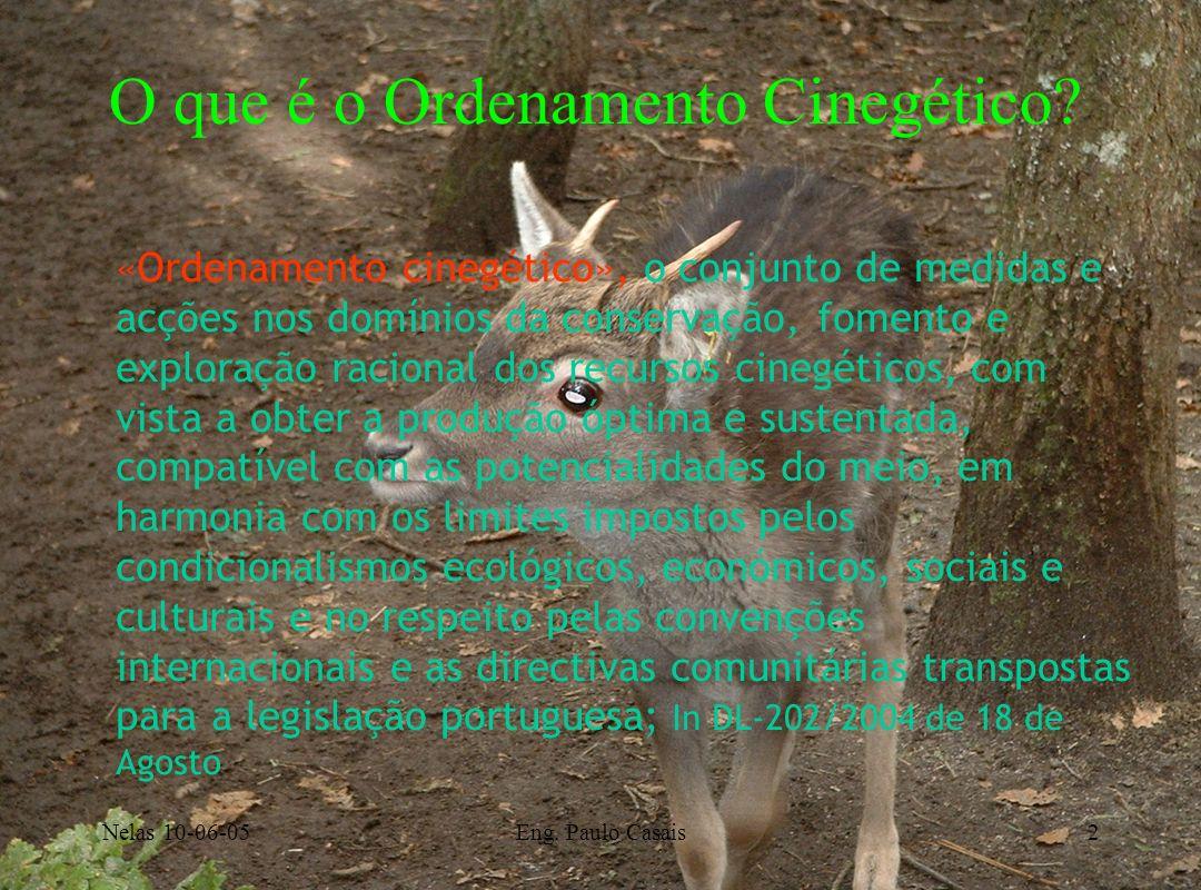 Nelas 10-06-05Eng. Paulo Casais2 «Ordenamento cinegético», o conjunto de medidas e acções nos domínios da conservação, fomento e exploração racional d