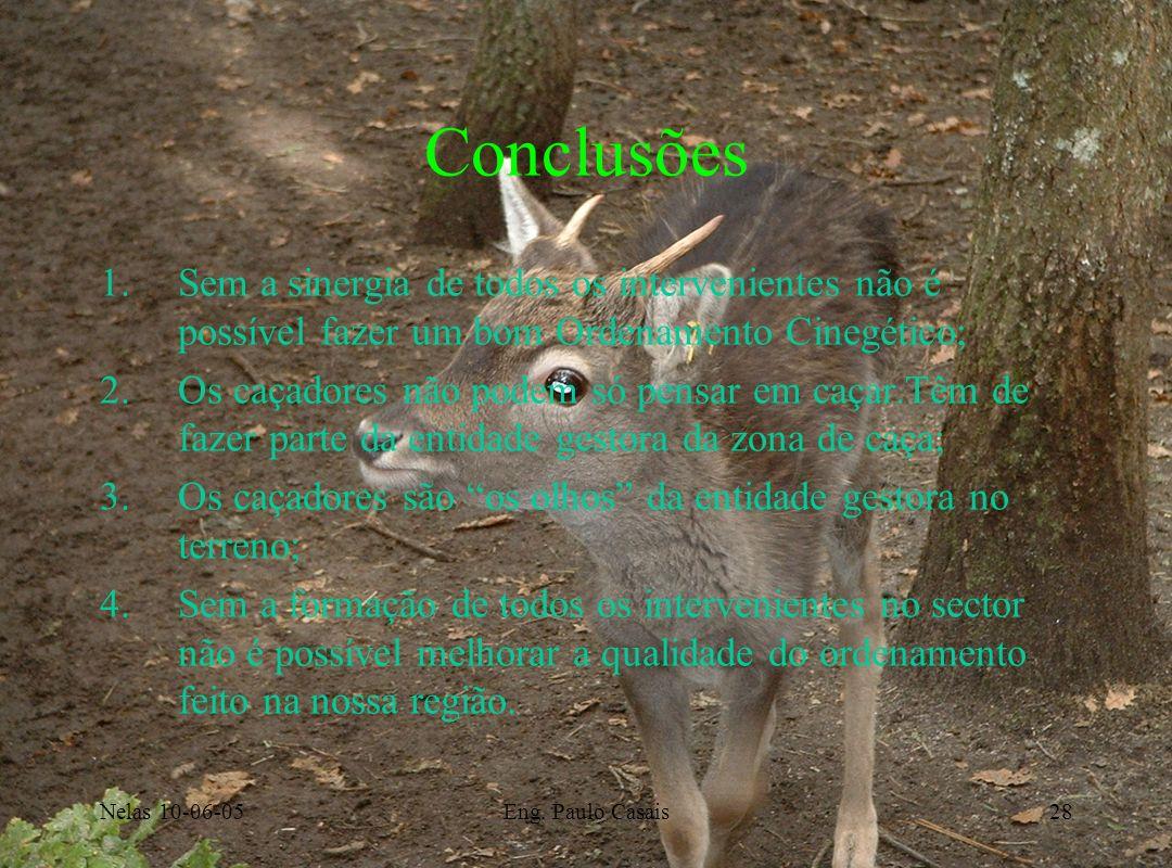 Nelas 10-06-05Eng. Paulo Casais28 Conclusões 1.Sem a sinergia de todos os intervenientes não é possível fazer um bom Ordenamento Cinegético; 2.Os caça