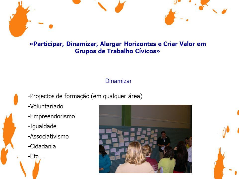 «Participar, Dinamizar, Alargar Horizontes e Criar Valor em Grupos de Trabalho Cívicos» Dinamizar -Projectos de formação (em qualquer área) -Voluntari