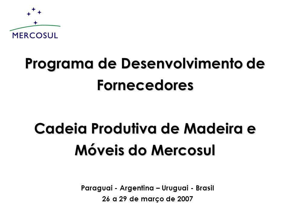 Programa de Desenvolvimento de Fornecedores Cadeia Produtiva de Madeira e Móveis do Mercosul Paraguai - Argentina – Uruguai - Brasil 26 a 29 de março