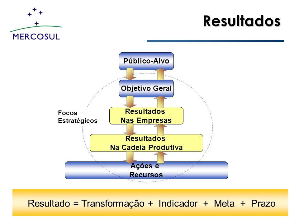 Resultados Público-Alvo Objetivo Geral Resultados Nas Empresas Resultados Na Cadeia Produtiva Ações e Recursos Focos Estratégicos Resultado = Transfor