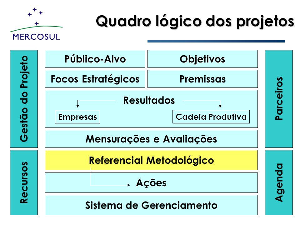 Quadro lógico dos projetos Público-AlvoObjetivos Mensurações e Avaliações Premissas Referencial Metodológico Sistema de Gerenciamento Focos Estratégic