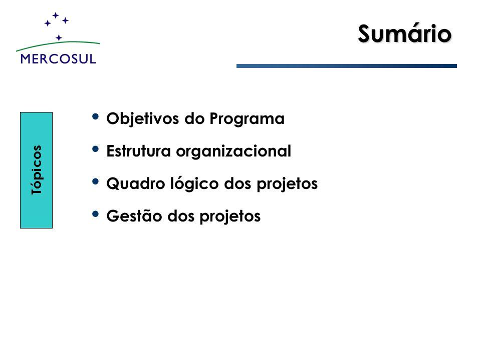 Sumário Objetivos do Programa Estrutura organizacional Quadro lógico dos projetos Gestão dos projetos Tópicos