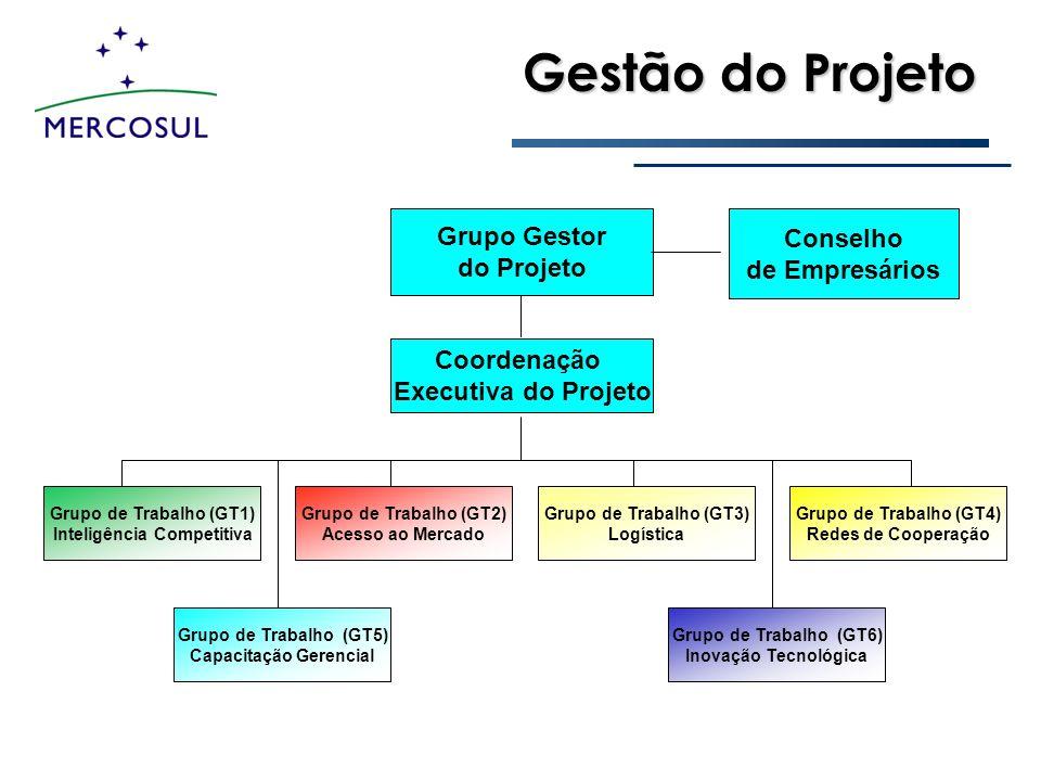 Gestão do Projeto Conselho de Empresários Grupo Gestor do Projeto Coordenação Executiva do Projeto Grupo de Trabalho (GT1) Inteligência Competitiva Gr