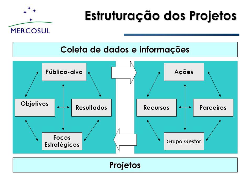 Estruturação dos Projetos Público-alvo ObjetivosResultados Focos Estratégicos Ações RecursosParceiros Grupo Gestor Projetos Coleta de dados e informaç