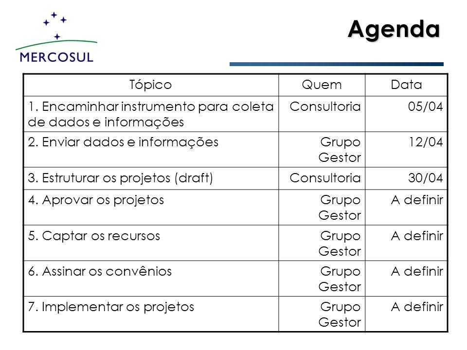 Agenda TópicoQuemData 1. Encaminhar instrumento para coleta de dados e informações Consultoria05/04 2. Enviar dados e informaçõesGrupo Gestor 12/04 3.