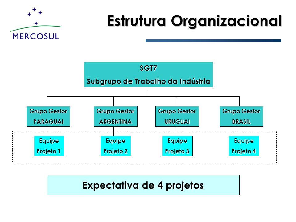 Estrutura Organizacional SGT7 Subgrupo de Trabalho da Indústria Grupo Gestor PARAGUAI ARGENTINA URUGUAI BRASIL Equipe Projeto 1 Equipe Projeto 2 Equip