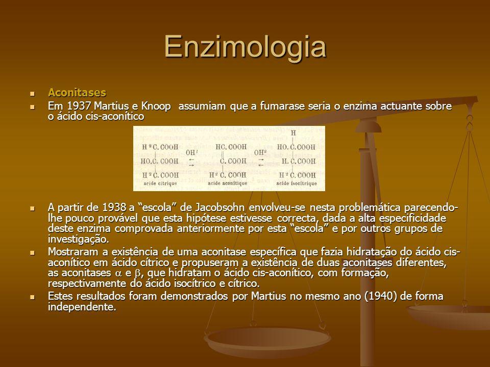 Enzimologia Aconitases Aconitases Em 1937 Martius e Knoop assumiam que a fumarase seria o enzima actuante sobre o ácido cis-aconítico Em 1937 Martius