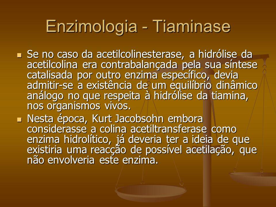 Enzimologia - Tiaminase Se no caso da acetilcolinesterase, a hidrólise da acetilcolina era contrabalançada pela sua síntese catalisada por outro enzim